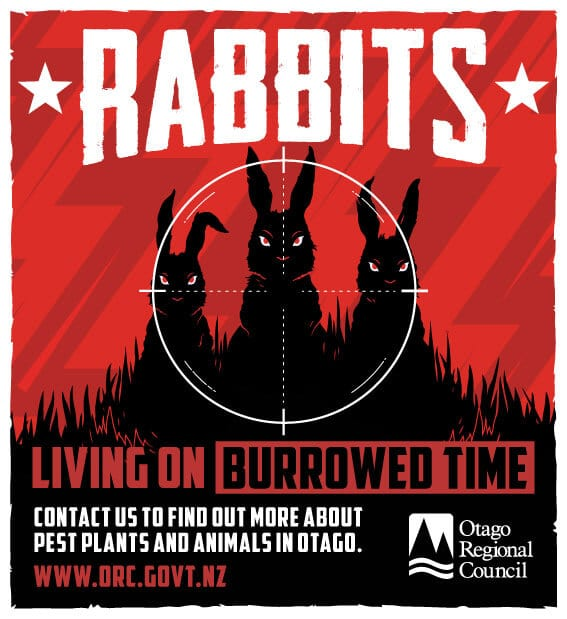 Otago Regional Council Rabbits Digital Advertising