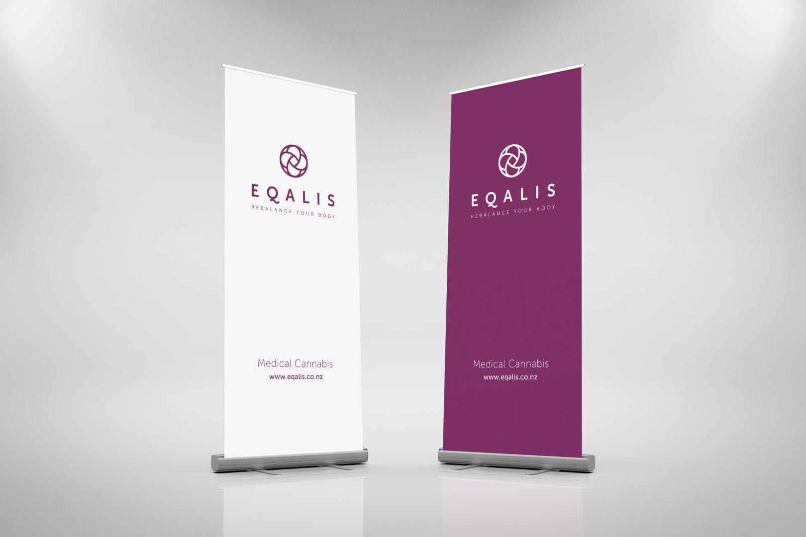 Fuel Agency Eqalis pull up banner
